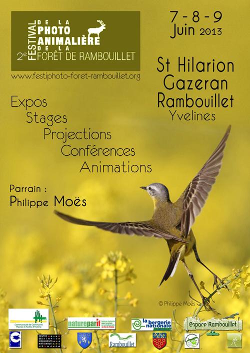 78 - Saint-Hilarion • 2ème festival de la photo animalière de la forêt de Rambouillet