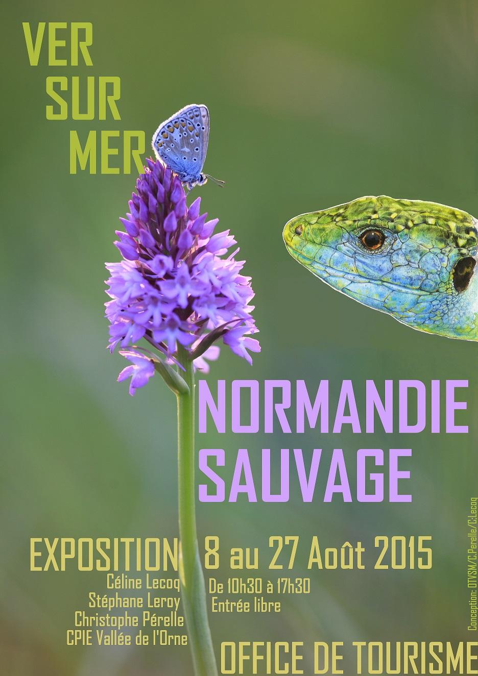 14 - Ver-sur-Mer • Exposition photo