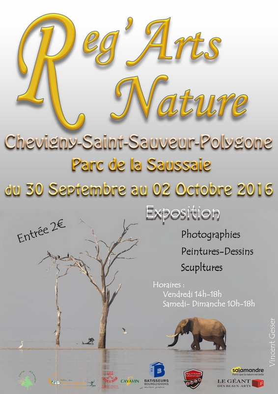 21 - Chevigny-St-Sauveur • Rencontres Reg'Arts Nature