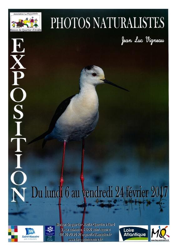 44 - Saint-Nazaire • Exposition