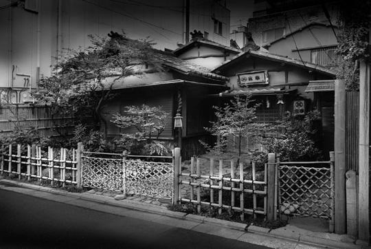 La Lumière de Tokyo (photos)