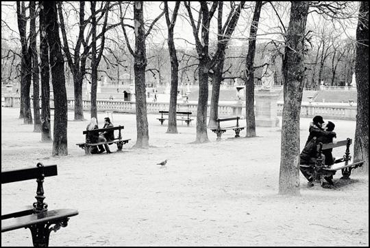 Les amoureux des bancs publics • Sébastien Bergeron
