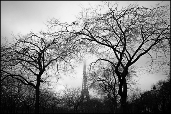 Seuil • Albéric Ortholary
