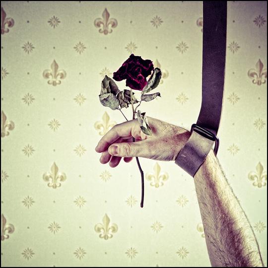 Last Pink • Christophe Verdier