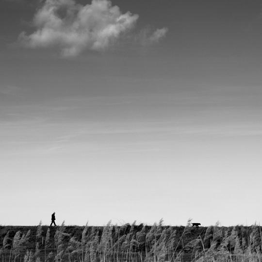 Métaphysique du dimanche • Marc Forel