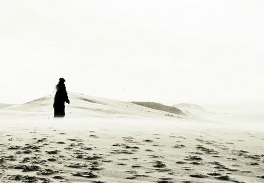Le vieil homme sur la dune • Pascale Philippe