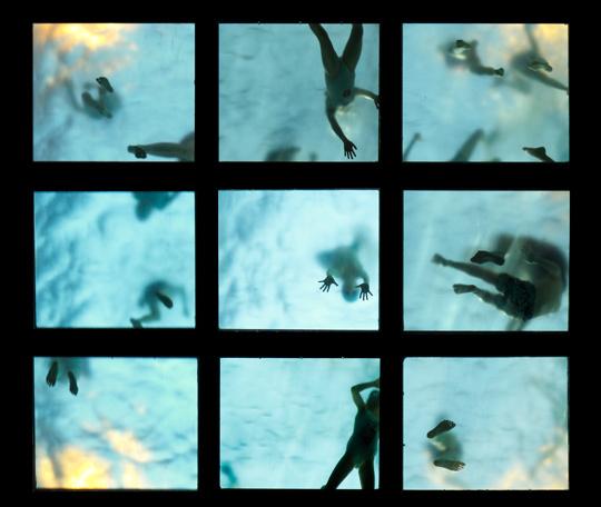 La vie aquatique • Didier Bouchet