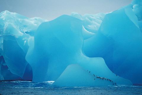 Il grande blu, iceberg | Antartide | Ecocepts International © Eyedea