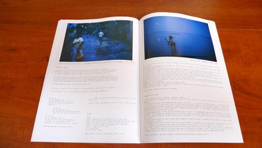 """Le catalogue de l'exposition """"L'heure des loups"""", de Véronique Durruty"""