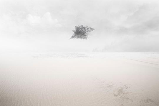 © Zhao Renhui, nominé du Prix Voies Off 2011