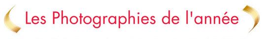 Les finalistes des Photographies de l'Année 2012