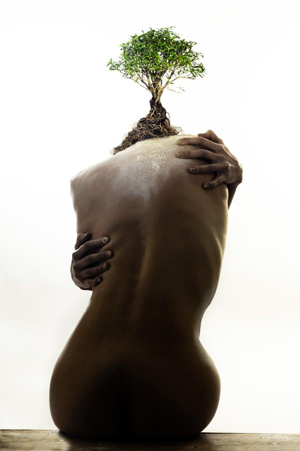 © Ivano Coltellacci - Tous droits réservés