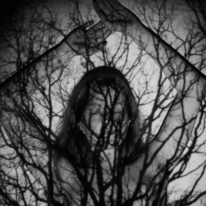 © Sandra Fastré • Tous droits réservés