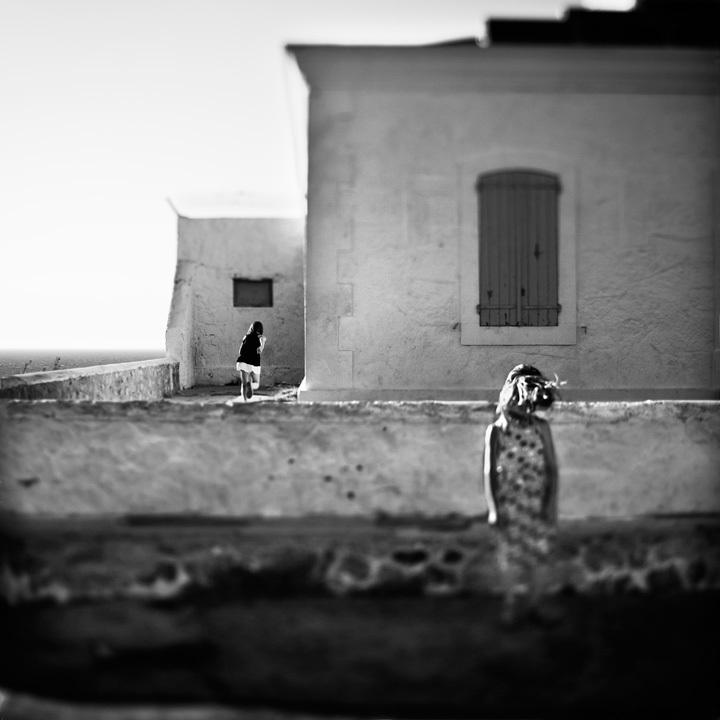 © Laurent Miaille - Tous droits réservés
