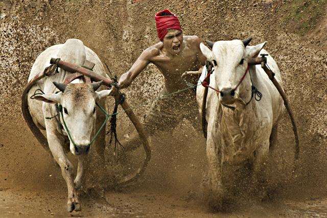 Open category winner / Photojournalisme  • Tong Leng Liew - Tous droits réservés