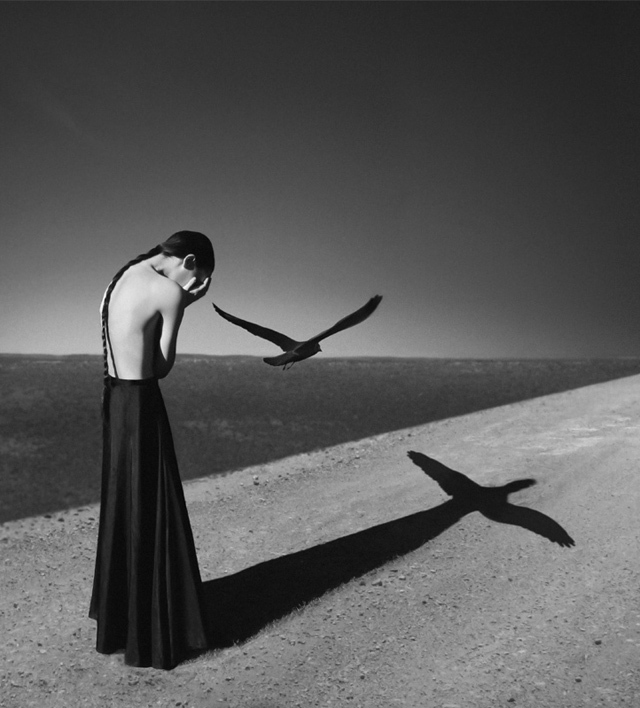 © Noell S. Oszvald - All rights reserved