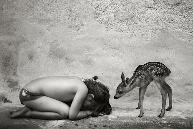 Dans l'insouciance de quelques éclats de vie, par Alain Laboile