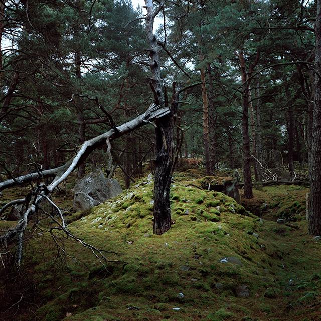 Alexandra Serrano, lauréate du Grand Prix photographique - catégorie Féminin