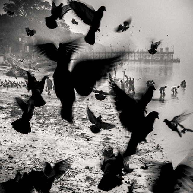 © Robert Ramser