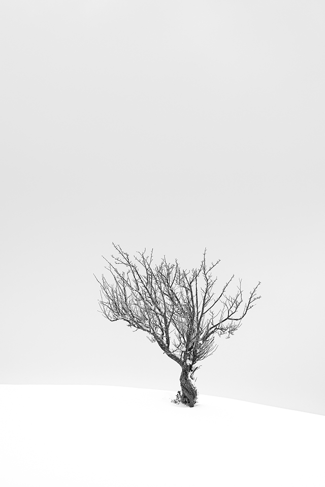 En mars, photographiez à contrejour un paysage enneigé
