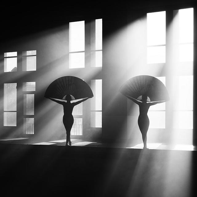 © Marc Lamey - Tous droits réservés