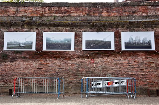 La série de Julien Mauve © Julien Benard - Tous droits réservés