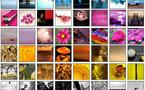 Concours CMJN • Les 330 premières photos