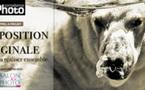 Participez au projet de L'Exposition Originale de Compétence Photo