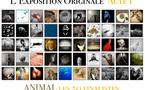 Les 50 finalistes de l'Acte I de L'Exposition Originale