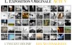 Les 50 finalistes de l'Acte V de L'Exposition Originale