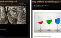 Créer gratuitement un photo blog avec le service Pixelistes