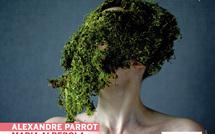 Les Irréelles #2 • L'affiche officielle nantaise