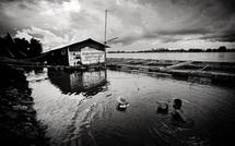 Sur les berges du Mekong • Cyril Abad (série)