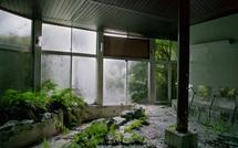 """Thomas Jorion, lauréat de la catégorie """"Nature / Environnement"""" des Photographies de l'Année 2012"""