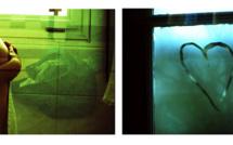 Compétence Photo et La Galerie Palladion exposent Arno Brignon à Toulouse du 8 juin au 13 juillet 2012 (interview)