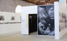 Les Promenades Photographiques de Vendôme avec le Fujifilm X-Pro 2