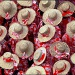 20161024230531_rouge_chapeaux
